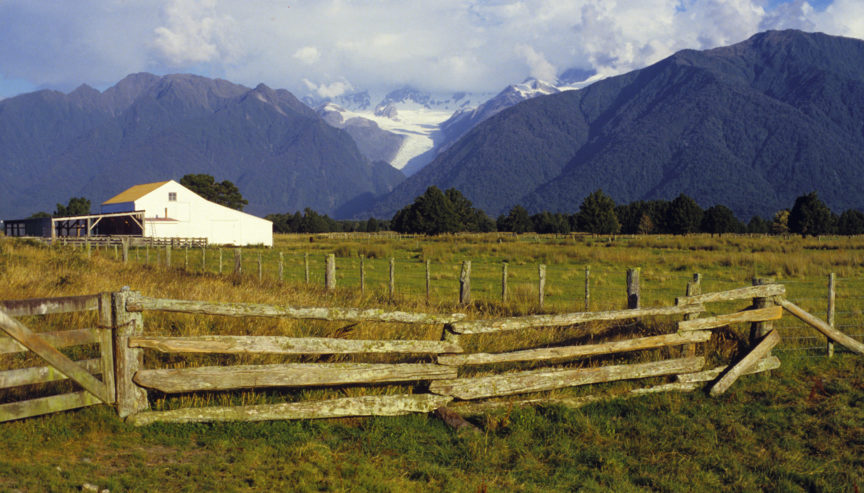 fw-west-coasst-fox-glacier-farmland-1